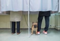 Tallinnas valis avapäeval Riigikogu 2380 inimest