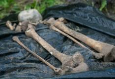 Tallinna Ülikool avab Eesti esimese arheoloogiliste luuleidude erihoidla