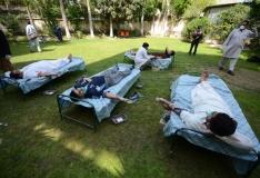 Uuring: viiruste levikus on süüdi inimtegevus