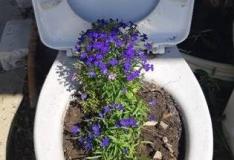 Olmejäätmete viskamine WC-potti ummistab reovee liikumist