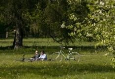 Arengustrateegia arendab Tallinnast rohelise maailmalinna