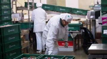 HKScani töötajad ei tagane 50-protsendilisest põhipalga tõusu nõudest