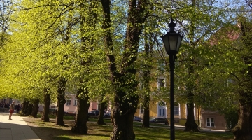 EKSPERT: Kodu lähedal asuv rohelus on demokraatlikuim viis tervist hoida