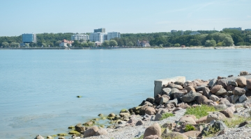 Majandusteadlane Väino Rajangu: meie piirkond ja terve linn ainult võidavad Reidi tee ehitamisest
