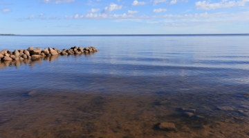 Terviseamet leidis kolmest Peipsiääre valla puurkaevust arseeni