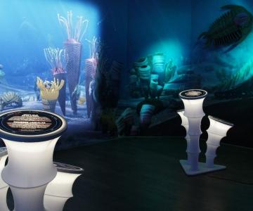VIDEO! Loodusmuuseum äratab ellu ürgsed mereelukad