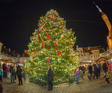 FOTOD JA VIDEO! Särama löönud kuusk avas täna jõuluturu