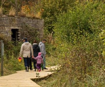 Roheline Tallinn on muutumas linnuvaatlejate paradiisiks