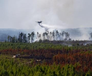 Päästeamet: väike vihm ei vähenda tuleohtu, metsas ei tohi isegi suitsetada!