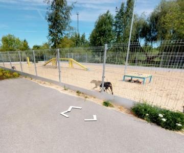 VAATA: Loomade varjupaik avas virtuaaltuuri