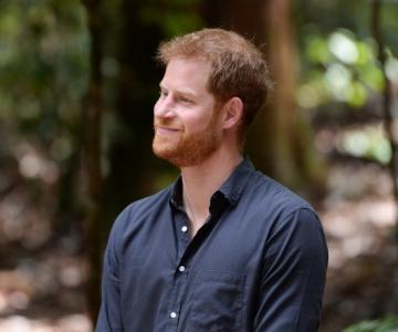 Prints Harry vaimsest tervisest: üks tugevuse tunnus on julgus otsida abi