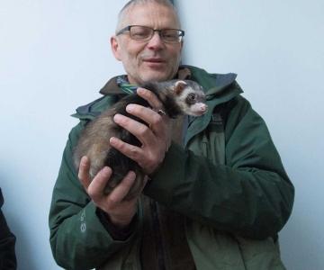 Meie loomaaed päästab Euroopa naaritsaid hukust