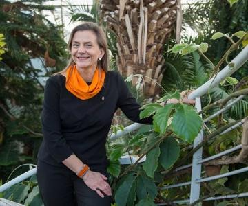 Botaanikaaia palmid saavad valgema kodu