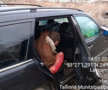 """Mupo: Lasnamäel kolis """"uinuvasse autosse"""" sisse puuküürnik"""