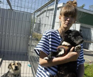 VIDEO! Tallinn kingib sünnipäeva tähistanud loomade varjupaigale koeraaedikute katused