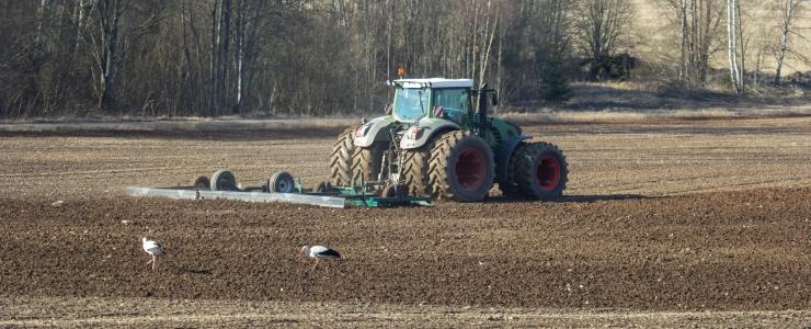 Eestlased on Soome farmides nõutud tööjõud