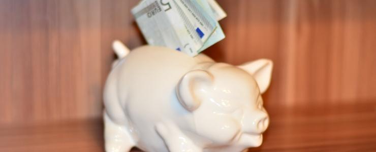 Ligi pooled Eesti inimestest ei tule oma palgaga toime