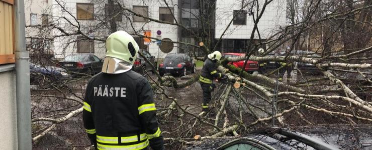 Tallinnas on Nõmme tormile kõige haavatavam piirkond
