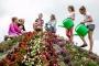 Eesti Õpilasmalev lõi malevarühmade registreerimiskeskkonna