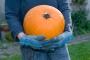 Loomaaialoomad saavad halloweeni puhul kõrvitsatega maiustada