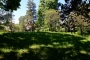 Tallinn teeb Kopli kalmistupargi korda
