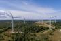 Ministeerium süüdistab Sõnajalgu omavolilises tuulepargi ehitamises