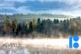 EV100 suvise peonädala avab Eesti esimene üldluulepidu