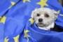 Eestlaste hinnang EL-i kuulumisele tõusis aegade kõrgeimale tasemele
