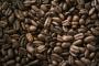 Uuring: enamik kohviliike on väljasuremisohus