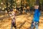 Sügisvaheaeg pakub lastele aktiivseid ja harivaid üritusi