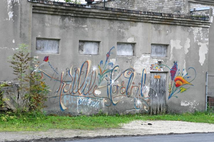 Tallinna kesklinnas toimub illegaalse graffiti puhastusaktsioon