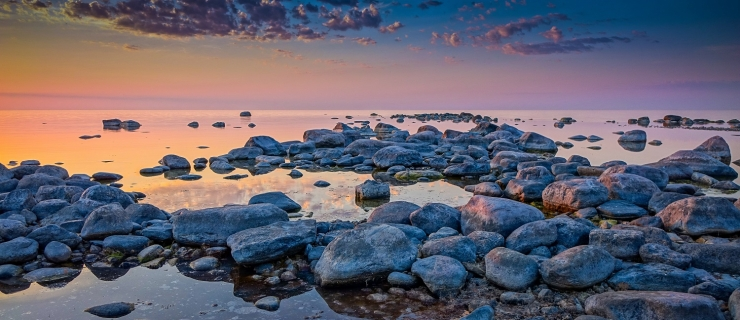 Loodusmuuseumis saab neljapäeval kuulata Soome lahe rütme