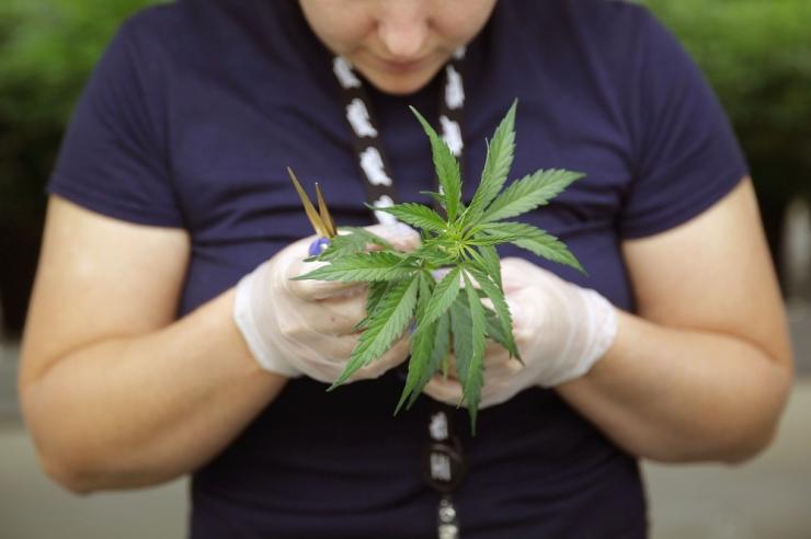 Kohus saatis narkokurjategijad pikaks ajaks vangi