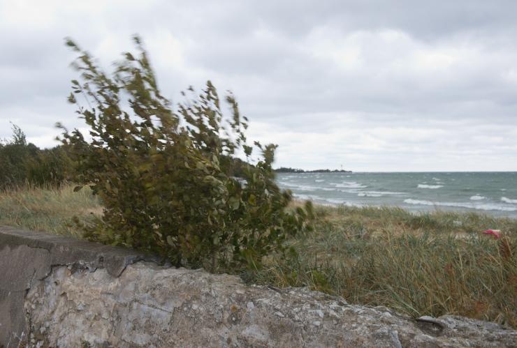 Pirital ja Pikakaril on nädalavahetusel avatud Keskkonnatelk
