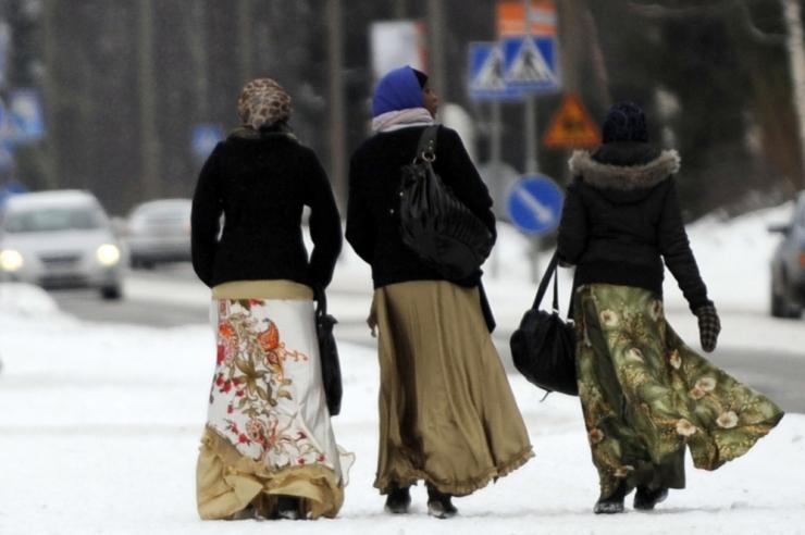 Soome hakkab sisserändajatele lahkumise eest peale maksma