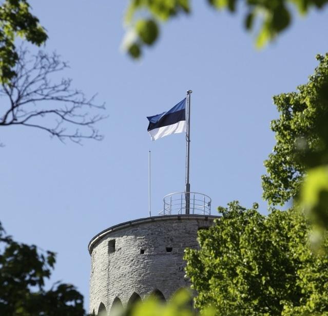 ARVAMUS: Savisaar aitas sinimustvalge lipu lehvima