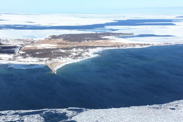 Teadlased: Tallinna ja Muuga laht on reostunud ja kalad kehvas seisus