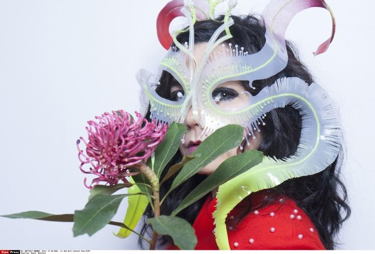 Kunstigümnaasium ühendab Björki leiutiste abil muusika ja füüsika