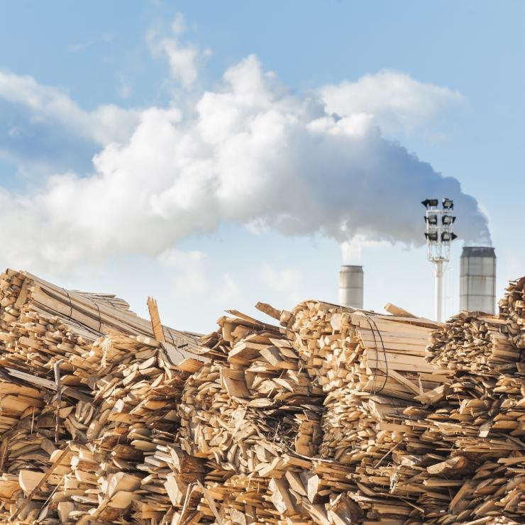 Ärimehed plaanivad miljardi euroga rajada puidurafineerimistehase