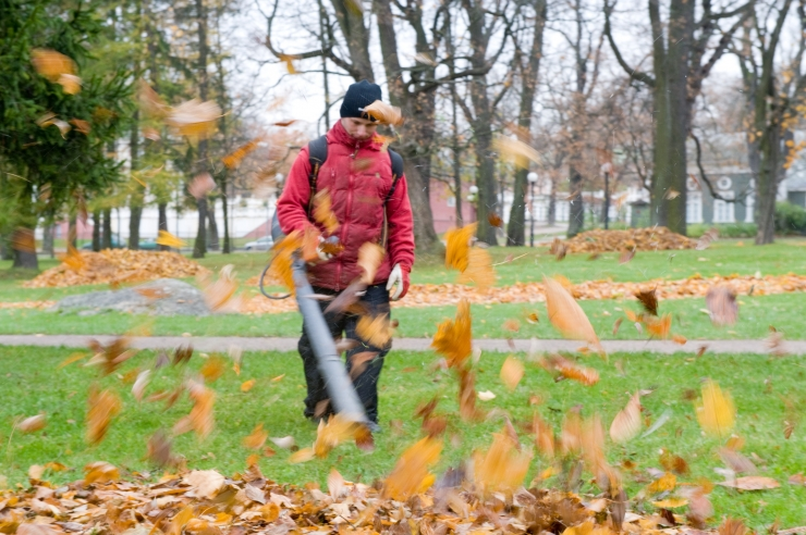 Tallinnas Nõmmel jagatakse lehtede ja okaste jaoks punaseid kilekotte