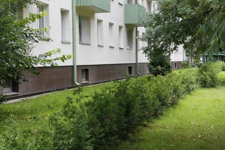 Tallinna korteriühistud saavad haljastustoetust