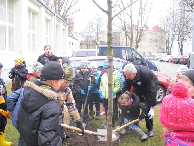 FOTOD! Maapäeva tähistati Südalinna Koolis puude istutamisega