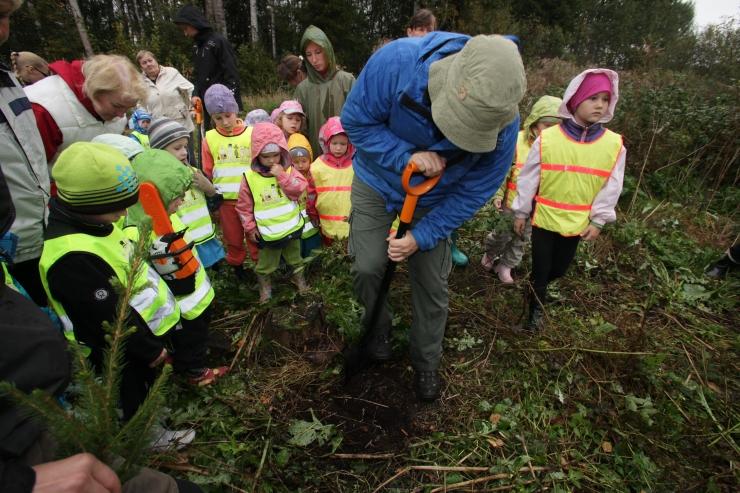 Erametsakeskus korraldab mitmes maakonnas metsaistutuspäevad