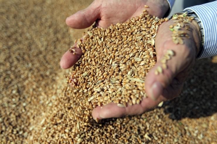 Eesti kvaliteetne ning puhas toit on Hiina turule väga oodatud