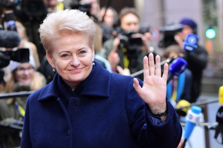 Grybauskaitė: e-valimised kujutavad ohtu rahvuslikule julgeolekule