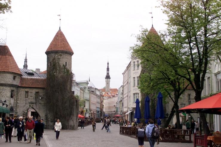 """Tegelusraamatus """"Paberist Viru värav"""" elustub keskaegne linnamüür"""