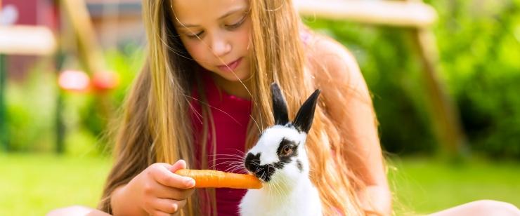 Lastearst: veganlus ei sobi lastele