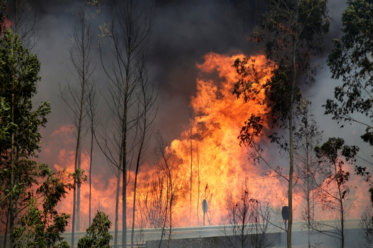 Portugali maastikupõlengutes on hukkunud 61 inimest