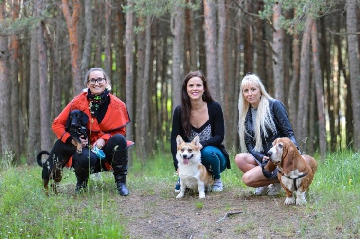 Eesti Loomakaitse Seltsi uus juhatus kutsub üles loomadele hoiukodu pakkuma