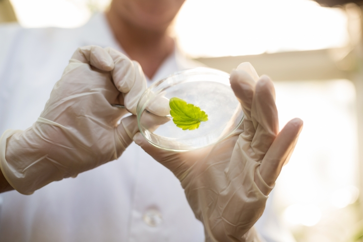 Euroopa keskkonnaministrid: peame loobuma keskkonnale koormavatest majandusmudelitest